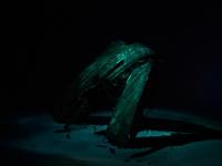 114_shipwreck-17.jpg